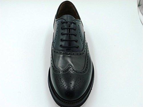 Nero homme basses Noir Sneakers Giardini qqRUpvw