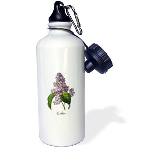 3dRose Lilac, Botanical Print of a Lavender Spring Blooming Fragrant Flower-Sports Water Bottle, 21oz (wb_171228_1), 21 oz, Multicolored