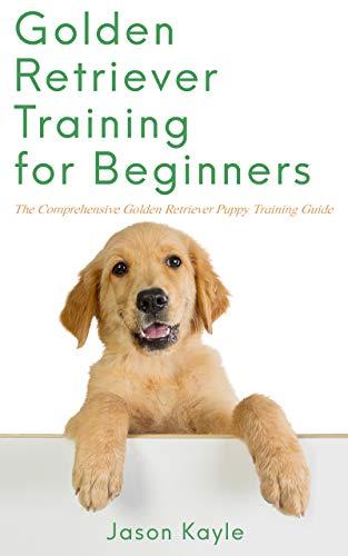 Golden Retriever Training For Beginners The Comprehensive Golden