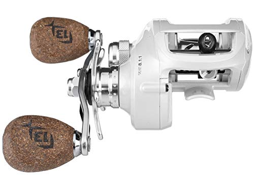 13 Fishing Concept C 7.3:1 Gear Ratio Right Hand Saltwater Reel