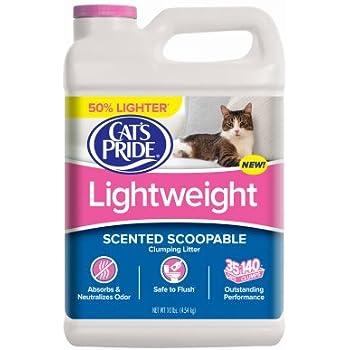 Amazon Com Oil Dri Jug Cat Litter 12 Lb Pet Supplies