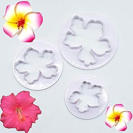 Minisu - 3 moldes de flores hawaianas para decoración de pasteles