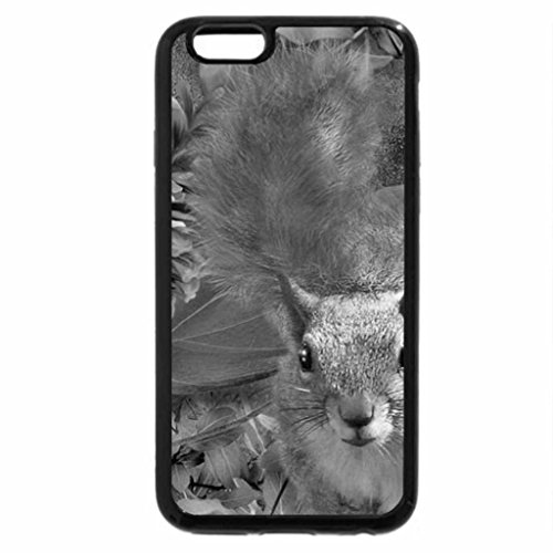 iPhone 6S Plus Case, iPhone 6 Plus Case (Black & White) - BEAUTIFUL SQUIRREL