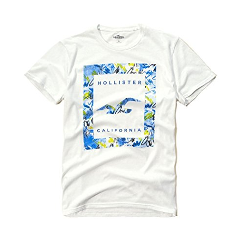 hollister-mens-graphic-logo-t-shirt-small-white-sig