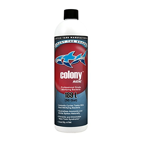ATM Blue Shark Animal Planet Tanked AAT00414 Colony Sw, 16-Ounce