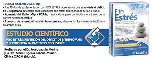 Fito Estrés Zentrum, rodiola, triptófano, magnesio y vit. B6, B5 y B3, 30cp: Amazon.es: Salud y cuidado personal