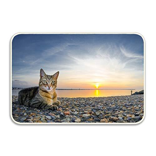 FunnyLife Cat Animals Sunset Beach Stones Durable Indoor/Outdoor Door Mats Home/Bedroom/Living Room/Garden Doormats,Machine-Washable