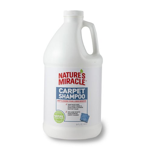carpet cleaner solution enzymatic - 2