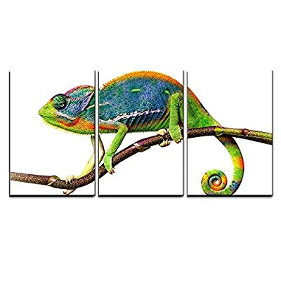 Chameleon x3 Panels, Created By a Professional Artist, Charming Piece