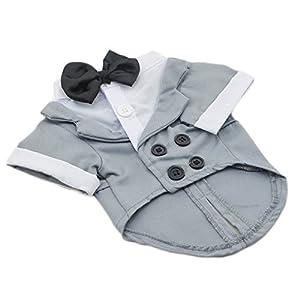Formal Dog Tuxedo Costume (Grey, Big Dog Large)