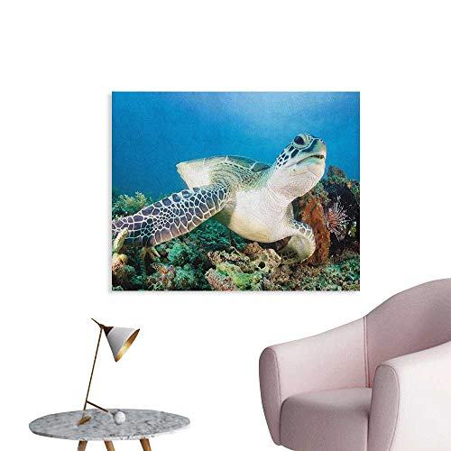 Anzhutwelve Turtle Photographic Wallpaper Photo of Green Turtle and Lion Fish on Tropical Coral Reef Chelonia Snorkeling Funny Poster Blue Green White W48 xL32