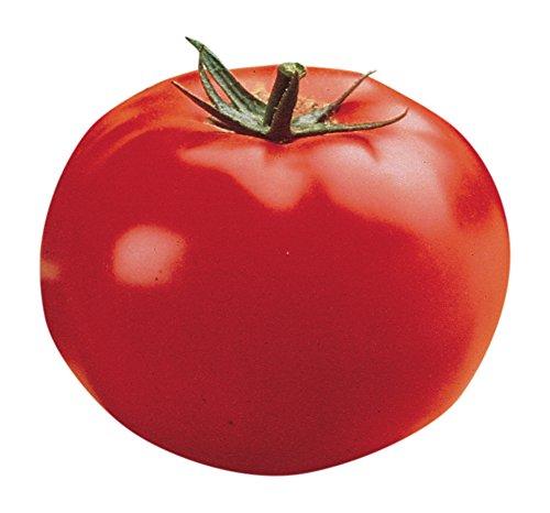Burpee Big Beef Tomato Seeds 35 seeds - Big Beef