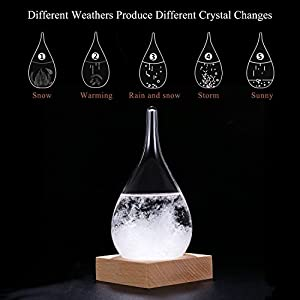 WELLDONE Storm Glass Water Drops Weather Forecast Bottle Storm Bottle Meteorological Display Bottle Creative Glass Crafts Home Decoration (mini 6-12)
