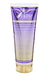 The Mane Choice Anti-Breakage & Repair Antidote Leave In Conditioner