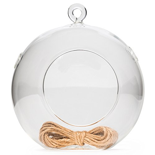Hathaspace Air Plant Glass Terrarium (5-Inch) + BONUS Jute Rope, Glass Orb/Globe Hanging Holder for Succulents & Indoor House Plants or Candles, Greenhouse Terrarium Kit Container & Planter (1 ()