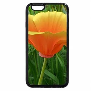 iPhone 6S / iPhone 6 Case (Black) ..Single Bright Poppy..