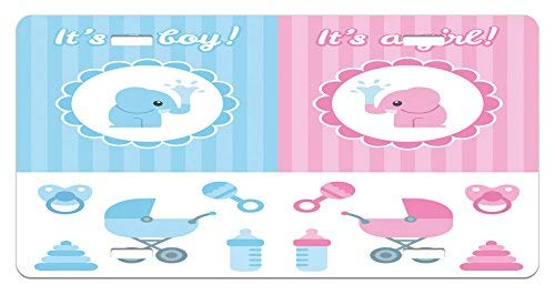 - Iliogine Gender Reveal Elephants Girl Boy Kids Newborn Composition with Baby Shower Icons Pale Pink and Blue License Plate Frame Car Tag Border for Men Women Car Garadge Decor