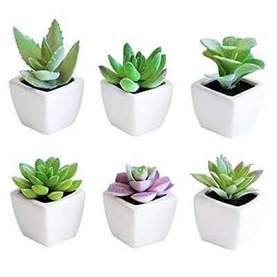 Sophia's Garden Set of 6 Artificial Succulent Plants with Ceramic Pots