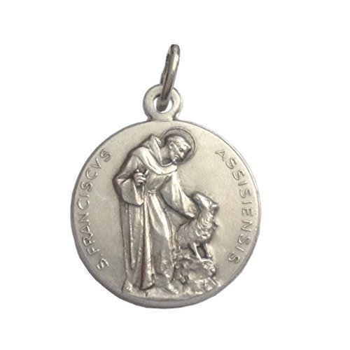 (Saint Francis of Assisi Medal - The Patron Saints Medals - Made in Italy)