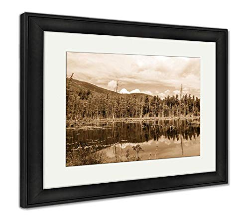 Ashley Framed Prints Wilmington Flume Trail Upstate NY, Wall Art Home Decoration, Sepia, 26x30 (Frame Size), Black Frame, AG32557520