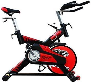 ECO-DE Bicicleta de Spinning Semi-profesional Volante de Inercia 25 Kgrs Panther ECO-820: Amazon.es: Deportes y aire libre