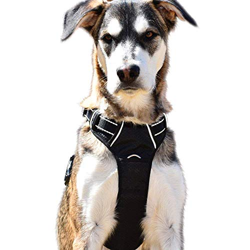 PuppArmor Large No Pull Dog Harness with Handle and Heavy Duty Leash Attachments - Front Clip Easy Walk - Adjustable - Highly Reflective - Dog Trainer Approved ()