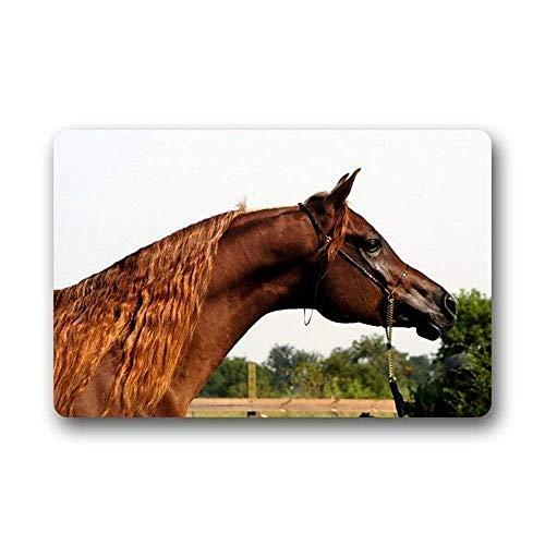 - Indoor Door Mat with Non Slip Backing,Arabian Horse Face Easy Clean Outdoor Doormats,Waterproof Low Profile Modern Aqua Runners Area Rug,24x16 in