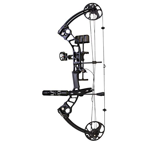 (Southland Archery Supply SAS Destroyer 70 lbs Compound Bow 320FPS (Black with Pro Package))
