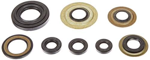 K&S Technologies 50-4041 Complete Engine Oil Seal (Complete Oil Seal)