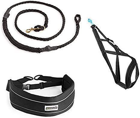 Kit Canicross (Talla 12): Amazon.es: Deportes y aire libre