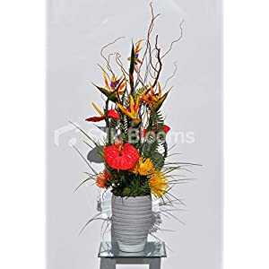 Silk Blooms Ltd Artificial Red Anthurium, Yellow Pincushion Protea and Bird of Paradise Arrangement w/Real Contorted Willow and Fern 90