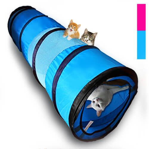 with Cat Tunnels design