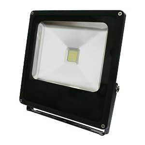 Foco de LED para exterior 30W. Luz día 6500K. IP65.