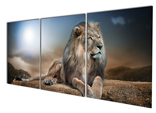 Wild Animals Wall (Gardenia Art - Animal World Series 24 Wild Lions Canvas Wall Art Paintings Animals Watercolor Pictures Artworks for Bedroom Living Room Decoration,12x16 inch/piece, Framed, 3 Panels)