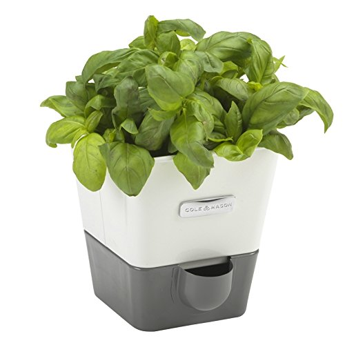 COLE & MASON Self-Watering Indoor Herb Garden Planter - Pot (Fresh Herb Container Garden)