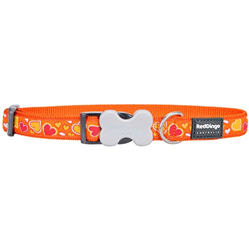 Red Dingo Dog Collar - Breezy Love Orange - Small