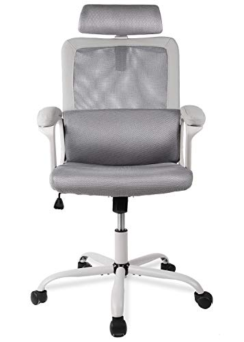 Smugdesk Ergonomic Office Chair, High Back Mesh Desk Office Chair Adjustable Headrest Computer Task Chair – Gray