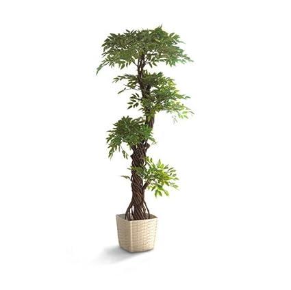 Large Stylish Artificial Japanese Fruticosa Tree, Luxury Handmade Using  Real Bark Replica Fake Indoor Plant