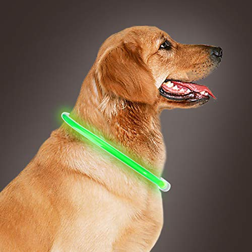 Takyu Led Dog Collar, USB Rechargeable Flashing Pet Safety Collars for Night Safety (Green)