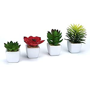 GemEwell Artificial Succulent Plants Set of 4 Mini Fake Cactus Succulent Potted Plant in White Cube-Shaped Ceramic Pot Ideal for Home & Office Decoration 11