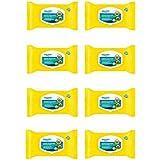 Equate Flushable Hemorrhoidal Medicated Wipes (8 pack)