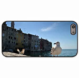 iPhone 5 5S Black Hardshell Case gulls birds buildings sea Desin Images Protector Back Cover