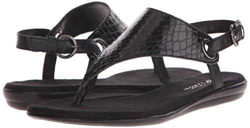Aerosoles Women's Conchlusion Gladiator Sandal, Black Snake, 9 M US
