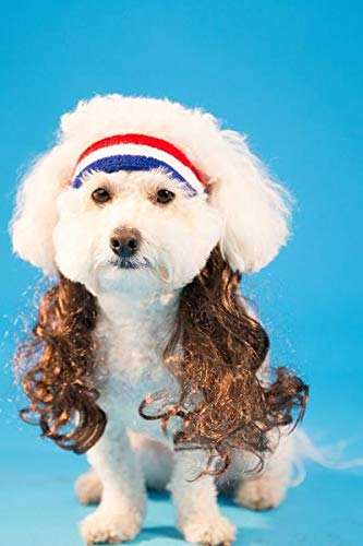 Dog With Mullet (The All American)
