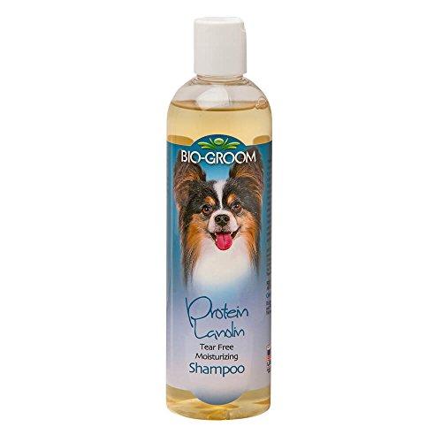 (BioGroom Protein Lanolin Shampoo, 12 oz)