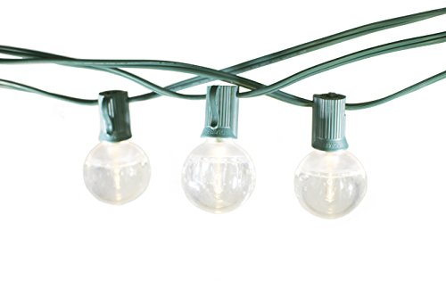 Home Accents Holiday 100 Led C9 Lights in Florida - 3