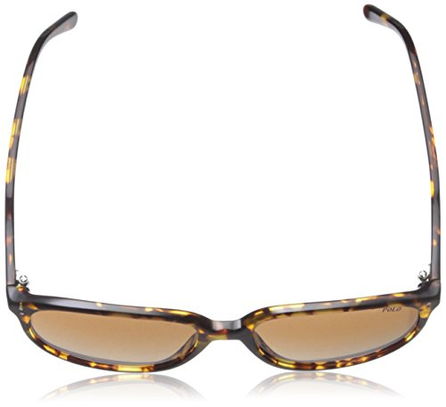 Polo Sonnenbrille (PH4097) VINTAGE GREY PINOT/GREEN GRADIENT