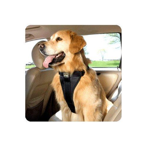 Tru-Fit Smart Harness w/Seat Belt Tether, XL 80+ lbs – BLK, My Pet Supplies