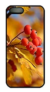 Autumn Mountain Ash PC Case Cover for iPhone 5 and iPhone 5s Black