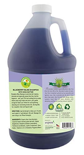 Espree Blueberry Bliss Gallon Shampoo, Pack of 2 with 1 Pump